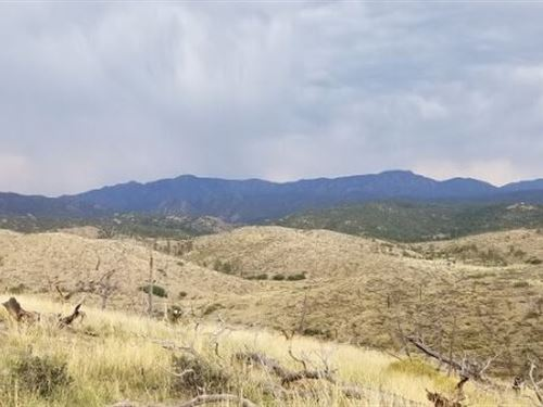 Great Escapes Wonderful 2.5 Acres : Cotopaxi : Fremont County : Colorado