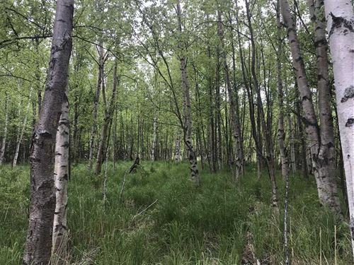1.71 Acre Residential Lot, Cul-De : Wasilla : Matanuska-Susitna Borough : Alaska