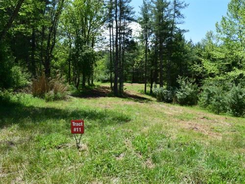 River Front Land Auction, Galax VA : Galax : Grayson County : Virginia