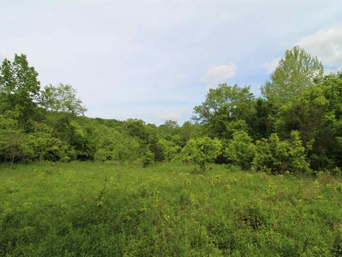 Bear Creek Rd, 15 Acres : Felicity : Clermont County : Ohio