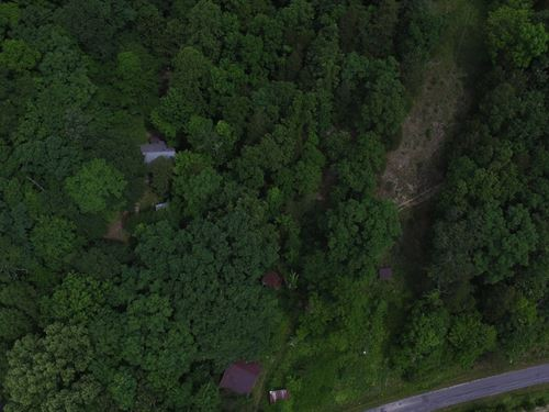 Wooded Acreage, 2 Older : Liberty : Casey County : Kentucky