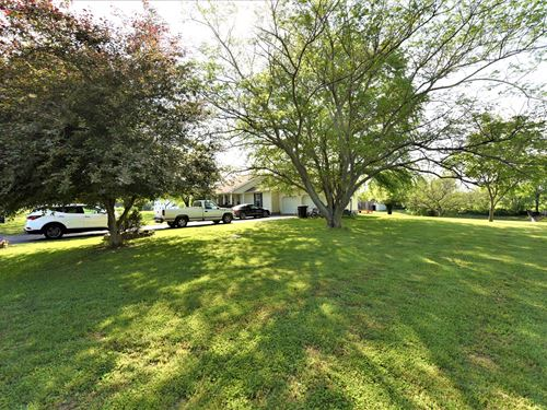 Raise Kids Animals Peaceful : Munfordville : Hart County : Kentucky