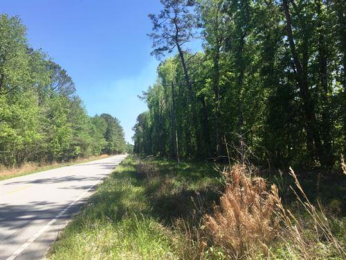 Carroll Tract East : Summerville : Dorchester County : South Carolina