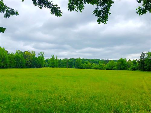 Land, Pasture Land, Hay, Hot : Jessieville : Garland County : Arkansas