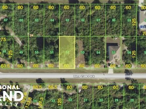 Nice Investment Lot in Rotonda West : Rotunda-West : Charlotte County : Florida