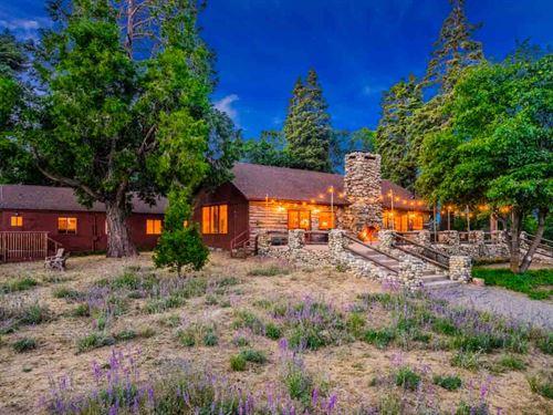 Palomar Mountain Lodge : Palomar Mountain : San Diego County : California