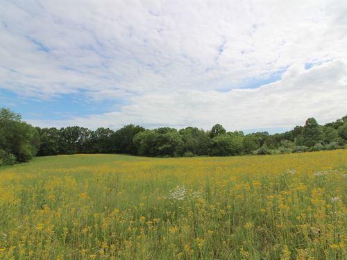Tr 119, 10 Acres : Kimbolton : Coshocton County : Ohio