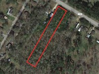 Unrestricted Residential Lot : Pine Forest : Orange County : Texas