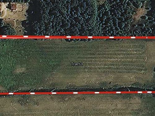 13 Acres / Knox, IN / Land For : Knox : Starke County : Indiana