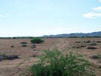 .35 Acre Parcel Near Phoenix