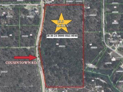 Acreage On Cousintown Rd.- A-570 : Interlachen : Putnam County : Florida
