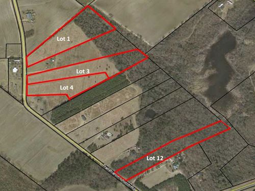 4 Residential Lots In Bleckley Co : Cochran : Bleckley County : Georgia