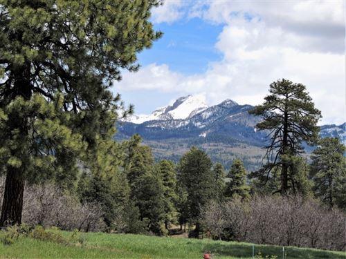 Reserve At Pagosa Peak, Lot 115 : Pagosa Springs : Archuleta County : Colorado