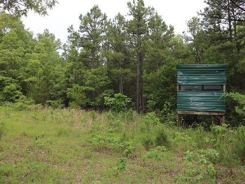 Land For Sale In Oxford, Arkansas : Oxford : Izard County : Arkansas