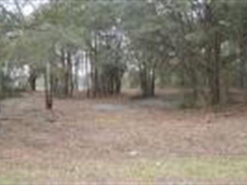 Picturesque Subdivision : Live Oak : Suwannee County : Florida