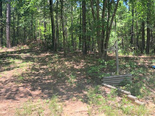 Horseshoe Bend Lake, 1.25 Acre Lot : Winnsboro : Wood County : Texas