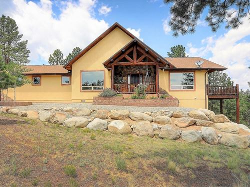 3918770, Contemporary Mountain Hom : Nathrop : Chaffee County : Colorado