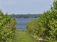 Lake Clinch Residential : Lake Wales : Polk County : Florida