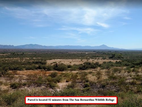 Impressively Affordable .40 Ac Lot : Douglas : Cochise County : Arizona