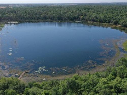 1.42 Acres On Deep Lake Wl-113 : Melrose : Putnam County : Florida