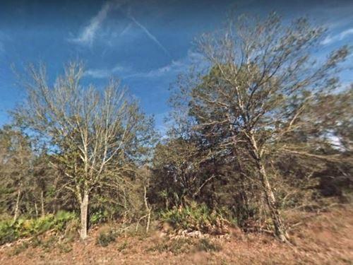 Citrus County, Fl $18,000-Neg : Crystal River : Citrus County : Florida