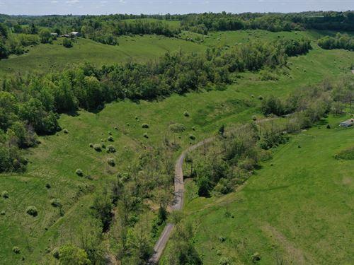 Amazing Land In Saint Clairsville : Saint Clairsville : Belmont County : Ohio