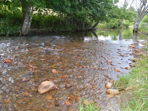 14.95 Acres Little River Frontage : Sparta : Alleghany County : North Carolina