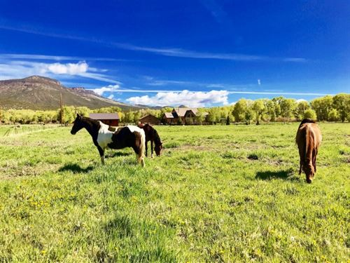 Horse Property : South Fork : Rio Grande County : Colorado