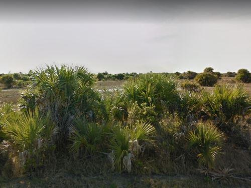 Brevard County, Fl $10,000 : Palm Bay : Brevard County : Florida