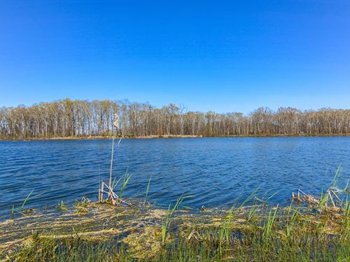 Wooded Lot In Windhaven Lakes : Hope Hull : Lowndes County : Alabama