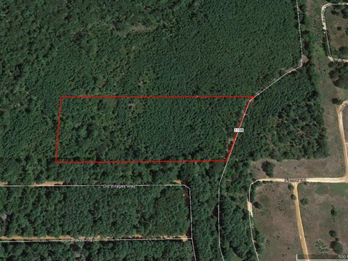 Great Tract Close To Tyler : Flint : Smith County : Texas