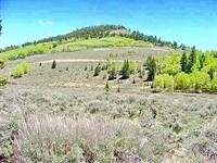 2 Acre Lot Blue Mesa Estate 63 : Gunnison : Gunnison County : Colorado