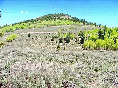 2 Acre Lot Blue Mesa Estate 63 : Gunnison : Colorado