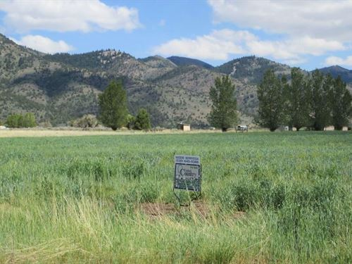 Awesome Corner Lot, New Pine Creek : New Pine Creek : Modoc County : California