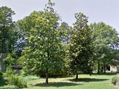 .22 Acre Lot In Dermott : Dermott : Chicot County : Arkansas