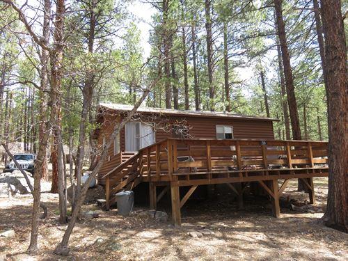Chama New Mex Brazos Cabin Northern : Chama : Rio Arriba County : New Mexico