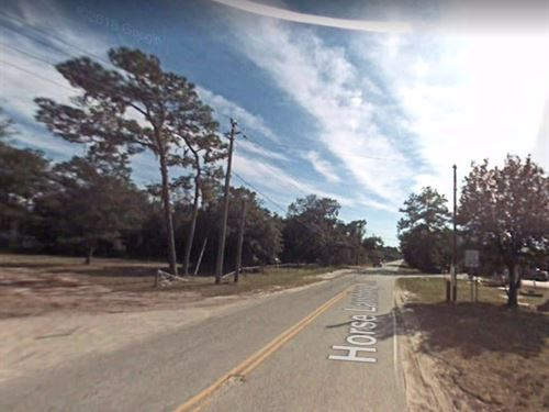 2 Lots For Sale In Satsuma, Fl : Satsuma : Putnam County : Florida