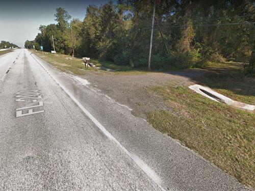 1.2 Acres For Sale In Hawthorne, Fl : Hawthorne : Alachua County : Florida