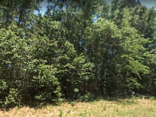 .34 Acres For Sale In High Springs : High Springs : Alachua County : Florida