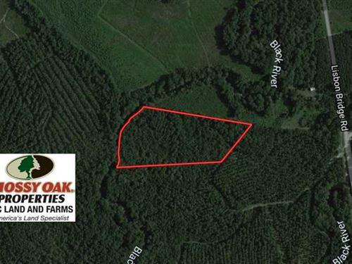 12.17 Acres of Timber And Hunting : Garland : Sampson County : North Carolina