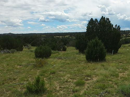 2.23 Acres Near Lathrop State Park : Walsenberg : Huerfano County : Colorado