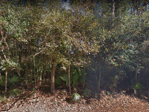 8 Lots For Sale In Jacksonville, Fl : Jacksonville : Duval County : Florida