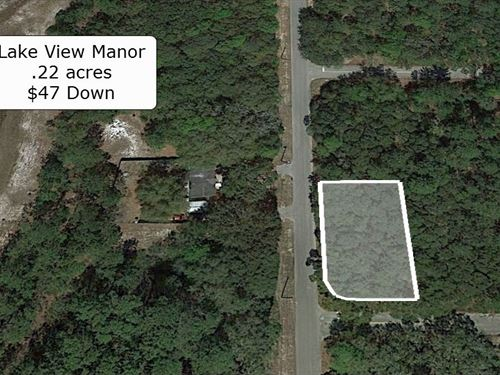 .22 Acre Corner Lot On Paved Road : Fort McCoy : Marion County : Florida