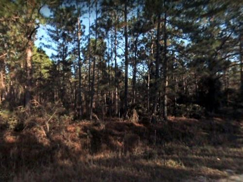1.61 Acres For Sale In Georgetown : Georgetown : Putnam County : Florida