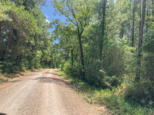 10 Acres Lost Indian Camp Road : Huntsville : Walker County : Texas