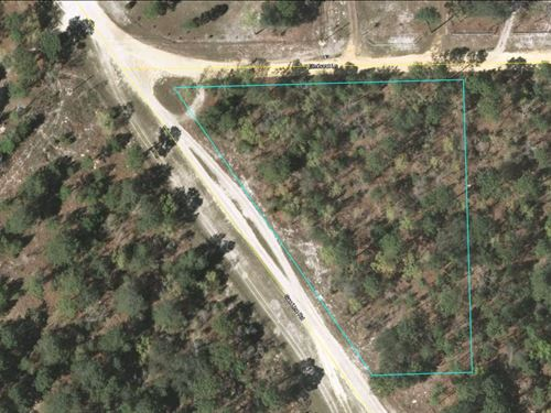 1.71 Acres In Keystone Heights, Fl : Keystone Heights : Clay County : Florida