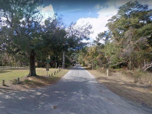 .24 Acres For Sale In High Springs : High Springs : Alachua County : Florida