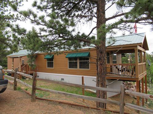 Mountain Home in Florissant, CO : Florissant : Teller County : Colorado