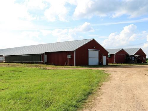 Asbury Poultry Farm : Skipperville : Dale County : Alabama