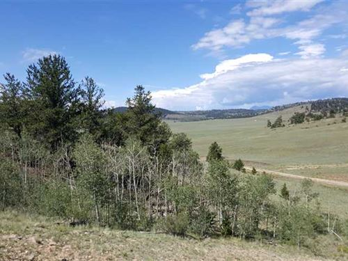 Rock Outcroppings, Trees & Mountai : Hartsel : Park County : Colorado